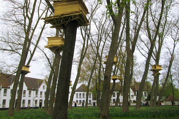 Tree Huts in Bruges- istallazione artistica alla triennale di Bruges di Tadashi Kawamata