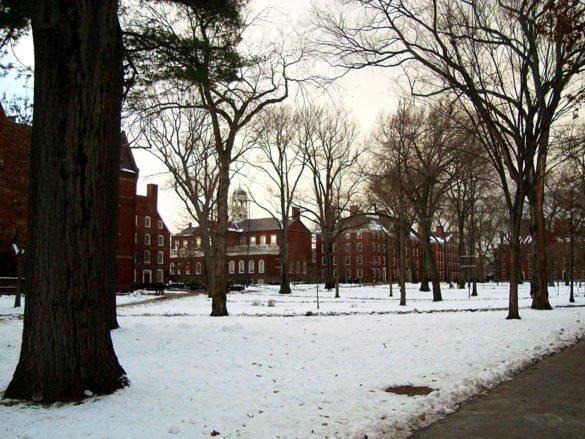 Harvard-university-Boston-usa-america