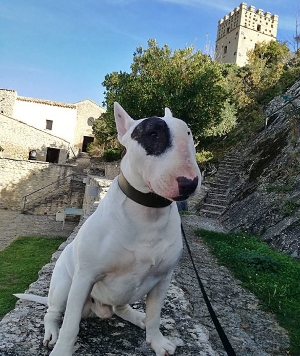 ack-a-roccascalegna-interno-castello-roccascalegna-roccascalegna-castello-roccascalegna-castelli-abruzzo-borghi-abruzzo-Abruzzo-Italia-Italy