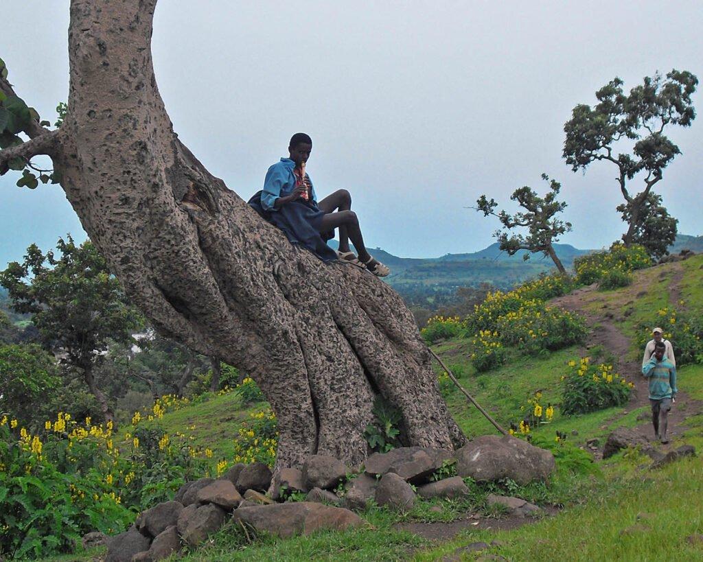 Bahir Dar-Bahar Dar-Etiopia- Ethiopia-Africa