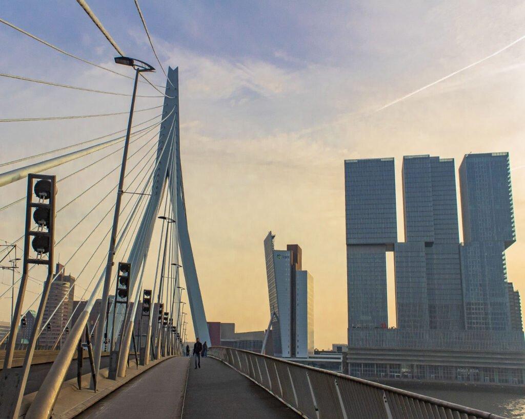 ponte erasmus-rotterdam-olanda
