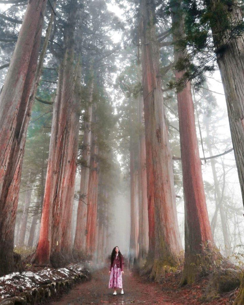 Nagano-Giappone-Japan