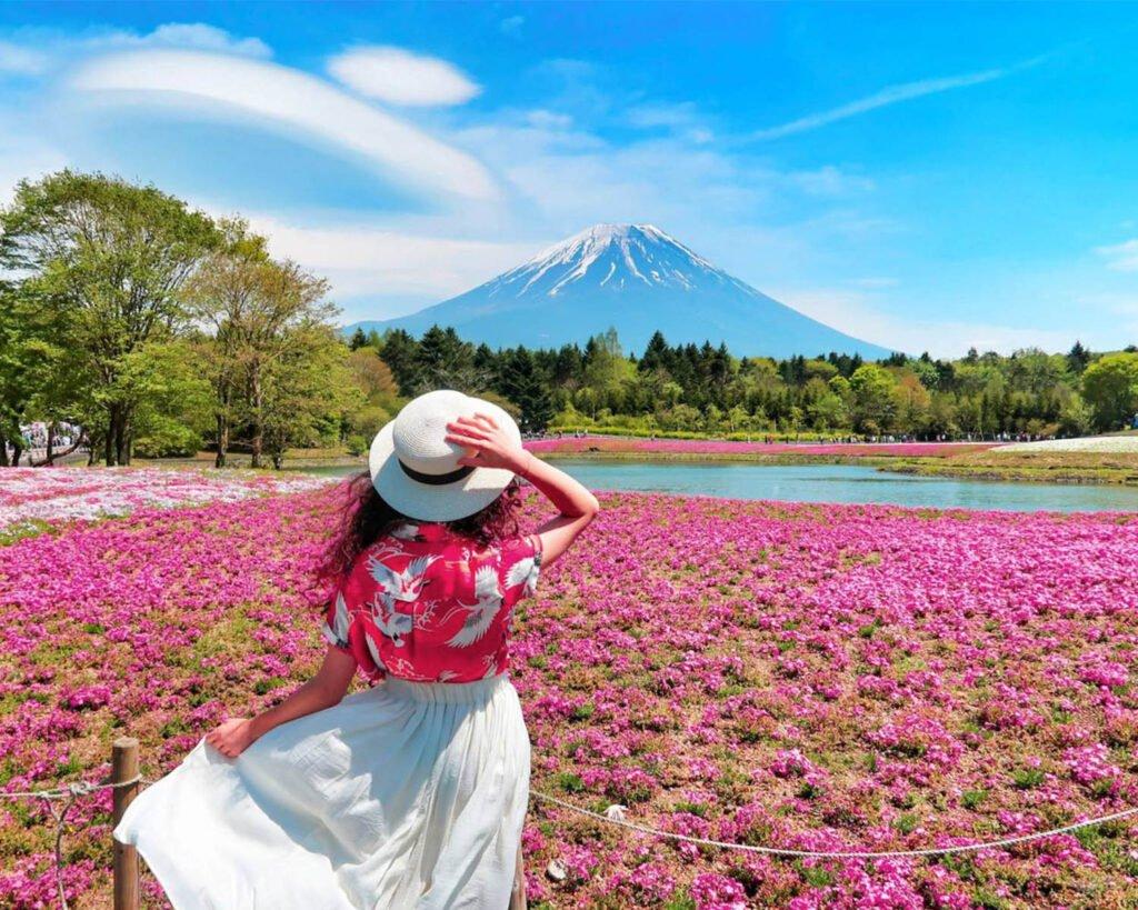 monte fuji-Giappone-japan